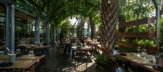 """Gewürz Gartengestaltung im Restaurant """"Segev"""" in Israel"""