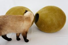 Cat house, cave, bed, nap cocoon from natural felted wool. FREE SHIPPING WORLDWIDE. Color mossy green.