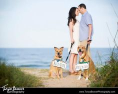 Beach engagement session with the couple's dogs wearing a sign with the wedding date Tonya Beaver Photography Jacksonville Florida Wedding Photography
