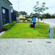 Gotta love a freshly cut lawn · Lawns ⛳   Gardens 🌱   Trees 🌳 ○ Maintenance and Installation ● Call 0437023677 ○ whistolmowing.com ● Perth, Western Australia · #lawnmowing #lawn #grass #leaves #gardening #tree #nature #trimming #green #perth #perthbusiness #perthisok #wanneroo #scarborough #joondalup #landscape #landscaping #hedging #nedlands #peppermintgrove #westernaustralia #Australia