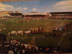 """Legnano, Il corteo storico all'interno dello stadio """"G. Mari"""" nel giorno del Palio di Legnano."""