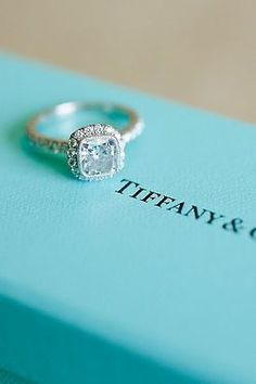 Tiffany white gold, cause regular gold looks terrible to me. Just an FYI to my future husband :)