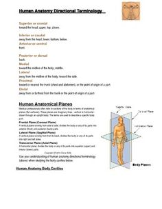Anatomical Direction and Body Planes - A Printable From ...