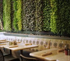 Bright Green Living Wall Gallery