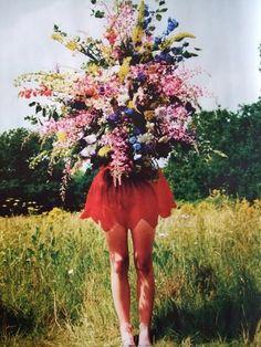 tim walker #tim #walker #flowers #bloom #wild