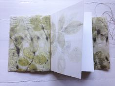 soft rose book inside cover/interior by lotta helleberg.
