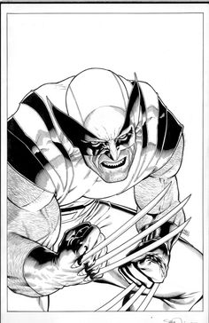 variant cover to Wolverine #305 by Steve McNiven, Mark Morales and Morry Hollowell