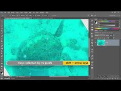 ▶ Photoshop tutorial: Correcting an underwater photograph | lynda.com - YouTube
