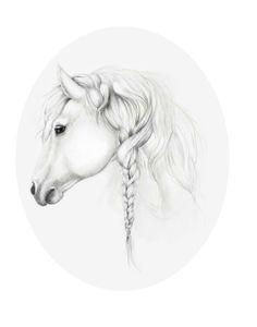 Horse drawing - braided mane