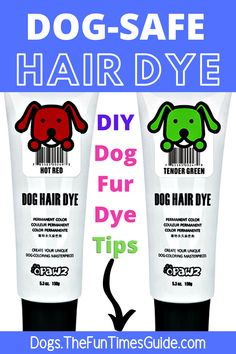 Dog Safe Hair Dye Ideas - see how to dye your dog's fur using dog safe hair dyes. You should NEVER use regular hair dye to dye your dog's fur… see why! Plus lots of tips for dying your dog's hair a different color yourself. #diydog #dogfur #dogskin #dogsafe #dogfriendly #doghair