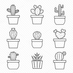 Set of vector cactus icons. by yod67 on @creativemarket