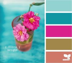 amei essa paleta de cores rosa , azul e cia.