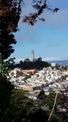 North Beach, Telegraph Hill, and Coit Tower in San Francisco