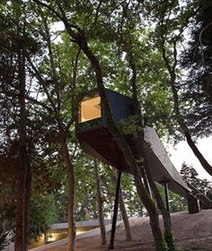 Is this actually glamping? Its not exactly a tent on the ground But you sleep in the treetops - isn't that enough? Pedras Salgados, Portugal