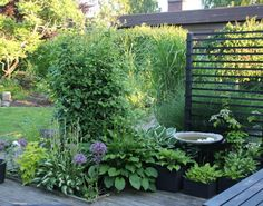 Landscape Focused: landscape, garden design ideas — Swedish Garden by Anna Kram. More images on her. Modern Garden Design, Patio Design, Landscape Design, Forest Garden, Garden Art, Home And Garden, Garden Plants, Cute Garden Ideas, Spiral Garden