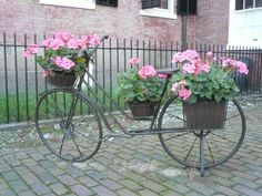 New England style homes are full of charm and their style speaks the lanquage of the East Coast. Find out more about our New England Style homes. New England Style Homes, Planter Pots, This Is Us, Wheels, Decorating Ideas, Bicycle, Easter, Spring, Beautiful
