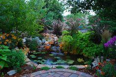 someday, mine will be even better than my dads pond Backyard Water Feature, Ponds Backyard, Pond Design, Garden Design, Goldfish Pond, Pond Fountains, Pond Landscaping, Garden Oasis, Garden Pond