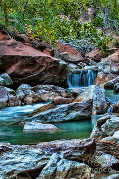✯ Virgin River - Zion National Park, Utah