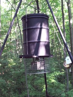 New feeder up