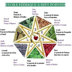 L'Heptagramme - www. Magick, Witchcraft, Pagan Symbols, Bug Out Bag Checklist, Lowbrow Art, All Is Well, Henna Patterns, Eye Art, Runes