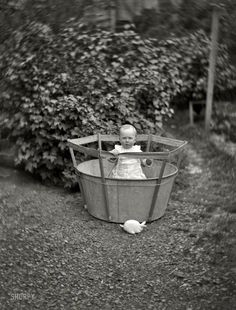 Life in gardens/enclos*ure -- Edgar Williams in bucket, Dunedin, New Zealand, ca. by William Williams, via Natl. Library of New Zealand. Antique Photos, Vintage Photographs, Old Photos, Vintage Children Photos, Vintage Pictures, Shorpy Historical Photos, Precious Children, Playpen, The Good Old Days