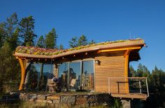 A 700 square feet cabin with live roof in Picard Point, Idaho. Designed by Jon Sayler Architect.