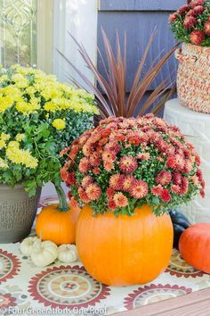 DIY Fall Pumpkin Planter -  This is an easy 10 minute decorating idea, perfect for your front door!
