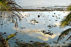 The sky reflected in a calm tropical tide pool