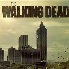 Anyone who REALLY knows me, knows that I am a Walking Dead junkie. I am so addicted. And have immensely enjoyed the comic.