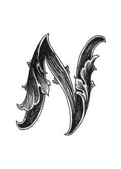 Leaf Script N Art Print