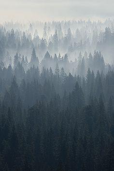 Yosemite morning - smoking valley