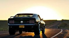 Muscle Cars N' Chicks