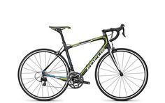 Focus - Vélos: 2016: Izalco Ergo Tour 105