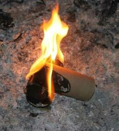 Toilet paper rolls make good fire starters:  Toilet paper rolls, Lint from your dryer, Lighter