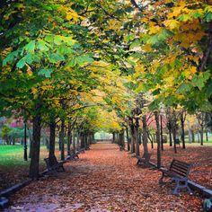 Parque de la Alameda, Soria (España)