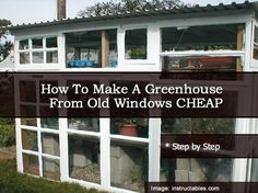 How To Make A Greenhouse From Old Windows CHEAP
