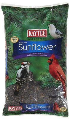 One of the most desired foods for all birds. A great source of energy and the thin hulls make it easier for birds to eat. Black Oil Sunflower Seeds, Wild Bird Feeders, Wild Bird Food, All Birds, Lawn And Garden, Christmas Ornaments, Pets, Black Food, Bulbs
