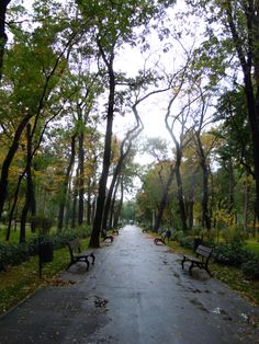 Parcul Bazilescu Bucharest Romania, Moldova, Black Sea, Bulgaria, Hungary, Childhood Memories, Country Roads, Europe, Places