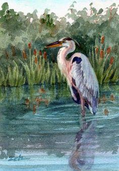 Zeh Original Art Blog Watercolor and Oil Paintings: Great Blue Heron