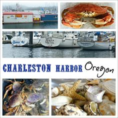 A Trip to Charleston Oregon. This is where I'm going to be working out of!!!!#OregonCoast #NorthBend #GoodEats