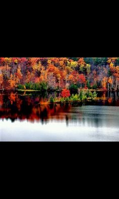Fall in Northern Michigan