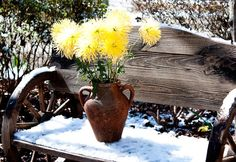 SHIJUN ART JOURNEY: My Spiritual Garden