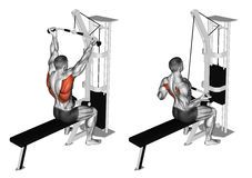 Exercising. Back Extension Machine - Download From Over 61 Million High Quality Stock Photos, Images, Vectors. Sign up for FREE today. Image: 68285447
