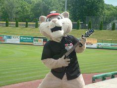 Southpaw the Valley Cat, Tri-City ValleyCats mascot; Class A-Short Season, New York-Penn League.