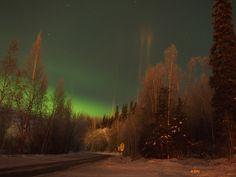 near Birch Hill Cemetery, Fairbanks
