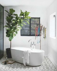 23 images that show how to style indoor plants: Acting almost as a curtain, this Fig towers in the small bathroom - perfect for adding drama and colour. Image credit: Instagram/livingetcuk