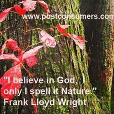 Is nature starting to push through with Spring where you live? If so, we think you'll love this quote. #nature #flowers