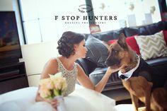 Beautiful bride & her German Shepherd