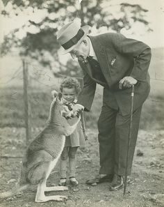 Beverley Purd's pet kangaroo