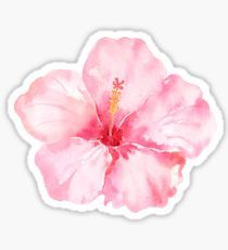 aesthetic pink 'Peach Pink Hibiscus Tropical Flowers' Sticker by pencreations Stickers Cool, Cute Laptop Stickers, Bubble Stickers, Printable Stickers, Bumper Stickers, Monogram Stickers, Tropical Flowers, Pink Flowers, Lilies Flowers